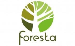 Разработка логотипов в Ташкенте